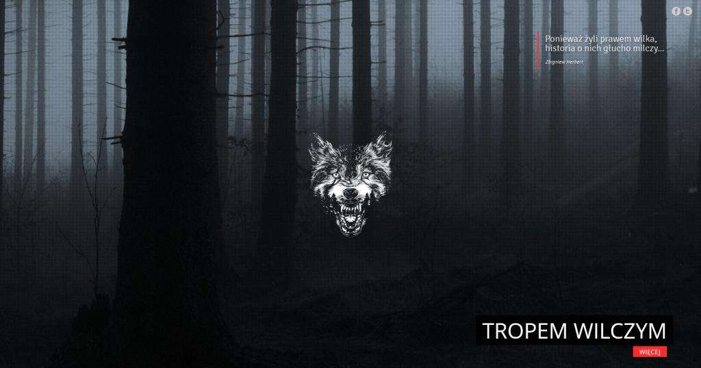 Wilk, las, obowiązkowy cytat z Herberta.