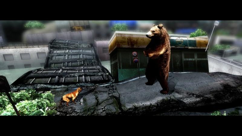 tokyo-jungle-bearxcat